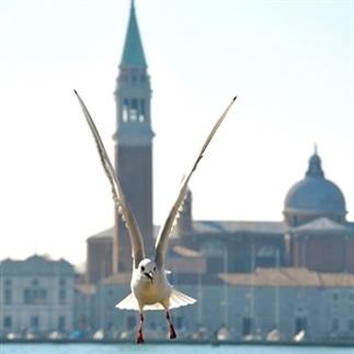 In vogelvlucht over Venetië
