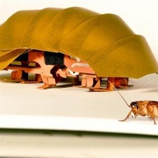 Mechanische kakkerlak redt mensenlevens!