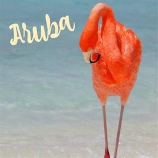 De mooiste stranden van Aruba