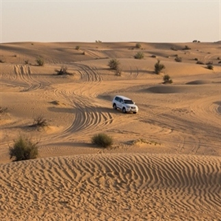 Wel of geen woestijnsafari in Dubai?