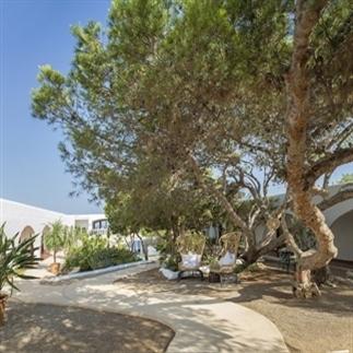 Verliefd op La Torre - Ibiza!
