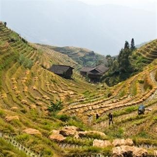 Zo mooi: de rijstvelden van Longsheng in China