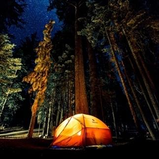 Net over de NL-grens kamperen midden in de bossen!