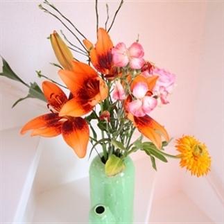 Ervaringen met bloomon