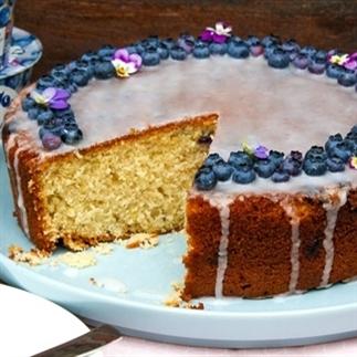 Blauwe bessen yoghurt cake