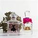 Parfüm Favoriten