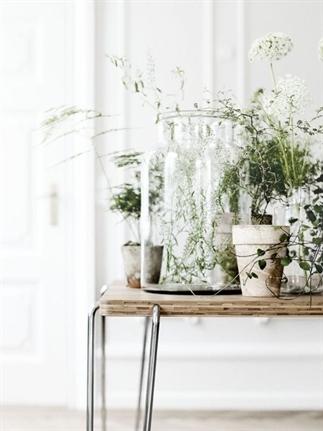 Groen wonen | Stylen met groen en glas