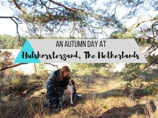 Video: herfstwandeling noord-oost Veluwe