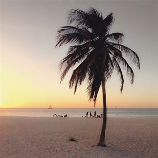 Aruba, One Happy Island!