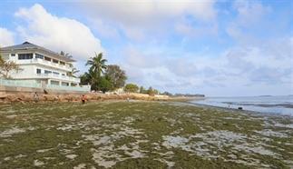 Dar es Salaam: hate it or love it