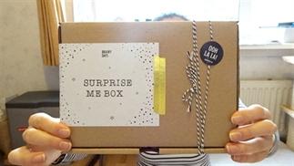 Unboxing Brainy Days surprise me box