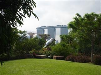 8 X WAAROM SINGAPORE GEWELDIG IS