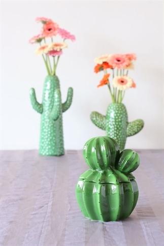 Cactus voorraadpot, nieuwe liefde ;)