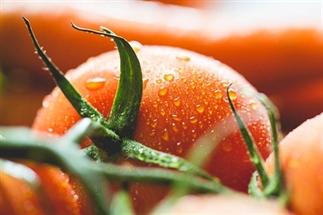 Dit zijn de 5 populairste groenten
