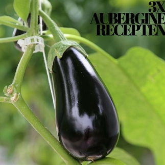 3x Turks recept met aubergine