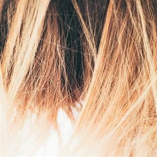 Arganolie: alle voordelen voor je haar en huid