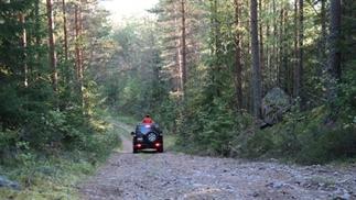 Op wildernis safari door Zweden! Wat voor jou?