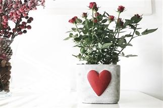 Snapshots Week 7: Valentijnsdag!