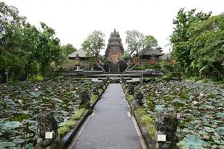 Ubud | Het groene hart van Bali