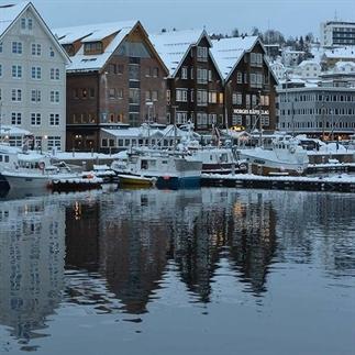 Walvissen en Noorderlicht spotten in Noorwegen