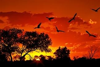 De 15 mooiste plekken van zuidelijk Afrika