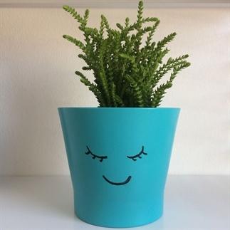 Plantenpotje met gezichtje