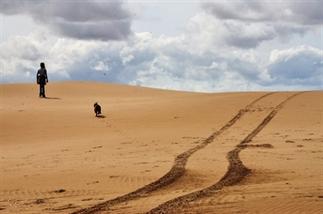 Woestijn in de Zee