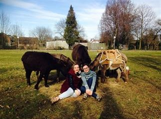 Wandelen met ezels in het Heuvelland: zo cute!