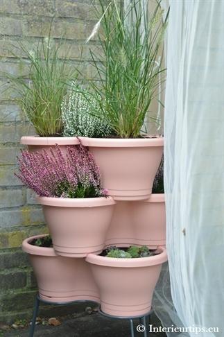 Verticaal tuinieren: kleine ruimte, groots resulta