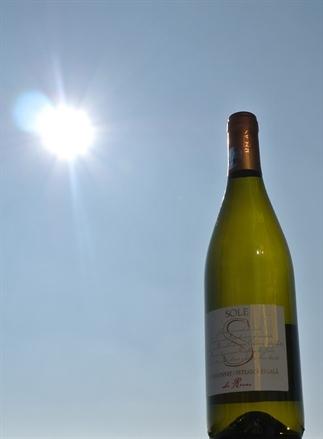 Wijn uit Roemenië, perfect voor in de zon!