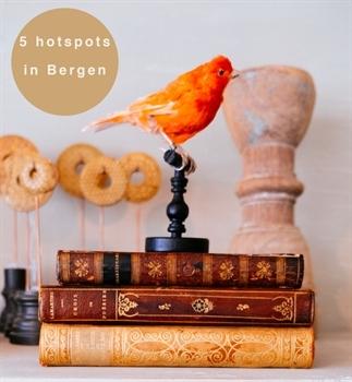 5 Leuke hotspots in Bergen