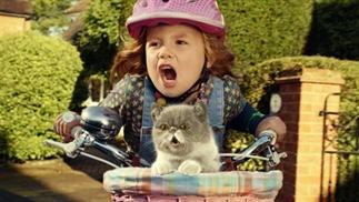 De 7 leukste reclames met katten