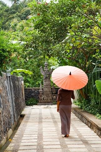 Luxe rondreis Bali: het onontdekte noorden