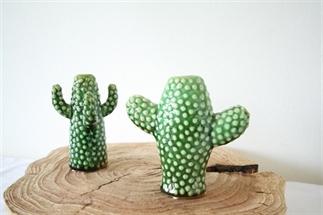 Mini cactus vaas, blikvanger in huis