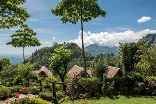 Verrassende reisbestemming: Sri Lanka