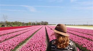 Zo mooi is het Tulpenfestival in Flevoland