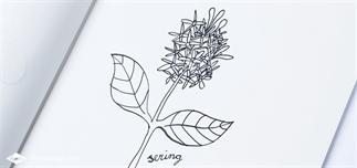 31 Dagen bloemen #2