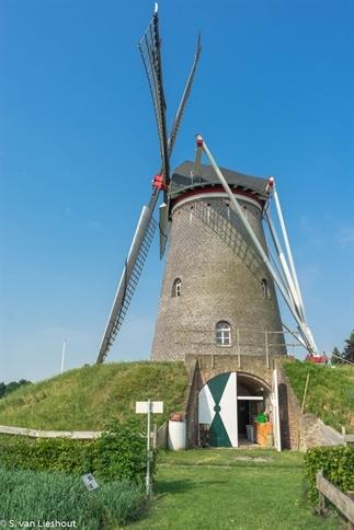 Dat is koren op de molen