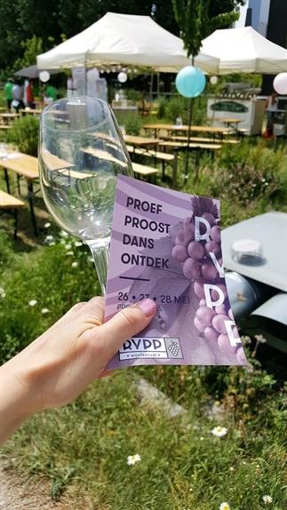 Rypp wijnfestival: een geslaagde eerste editie!