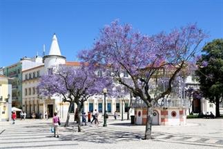 Verrassing: zo rustig kan de Algarve ook zijn!