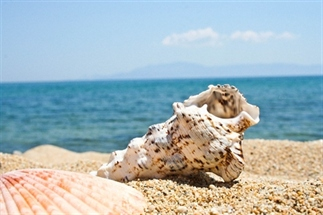 5 Musthaves voor een dagje strand