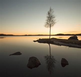 De magische natuur in Västerbotten, Zweeds Lapland