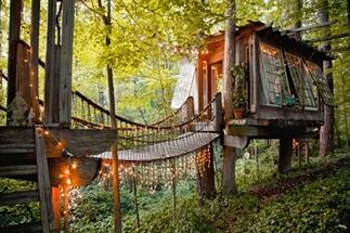 Dit is de meest populaire boomhut op Airbnb