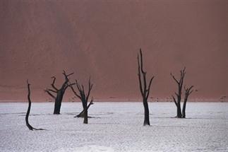 Namibië in beeld