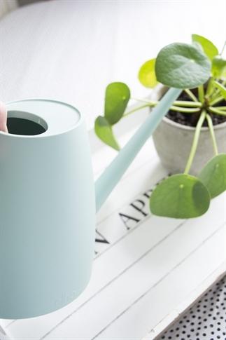 Plantjes water geven in stijl