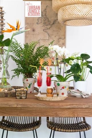 Tropical sfeer in huis - Urban Jungle Bloggers