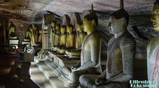 De ideale reisroute voor 2 weken Sri Lanka