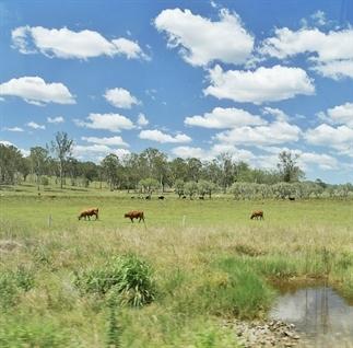 (Road)trip Australië: van Cairns naar Melbourne
