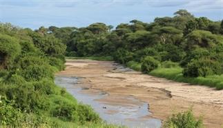 26 redenen waarom je niet naar Tanzania moet gaan