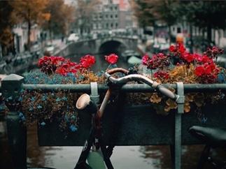 De mooiste fietsroutes vanuit Amsterdam